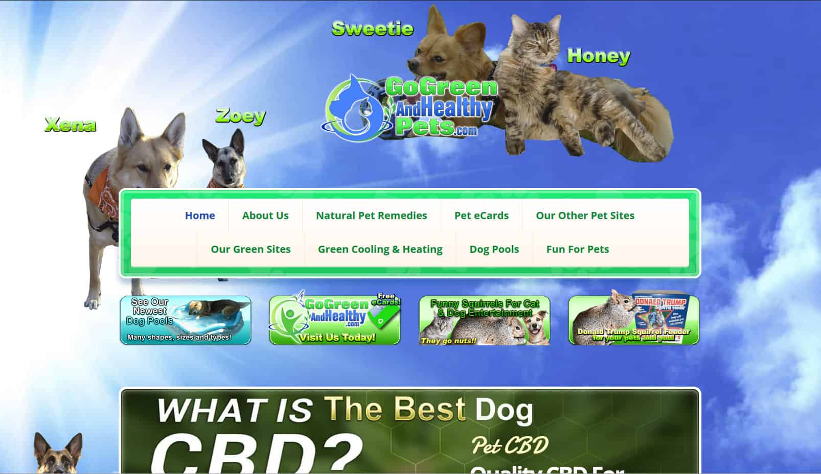 Paws & Claws theme applied to pet site