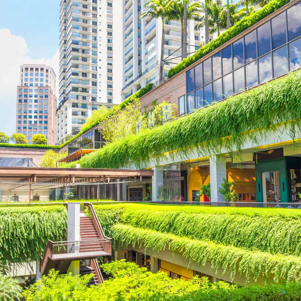 Help Your Business Go Green – Find Out How…
